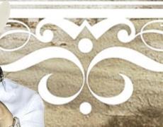 Joan Sebastian en México 2014: Concierto en México DF