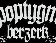Apoptygma Berzerk en México 2014: Concierto en México DF
