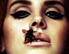 Lana del Rey en México 2014: Concierto en México DF